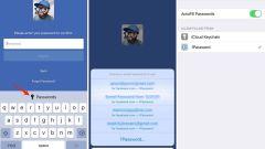password-autofill-ios-12